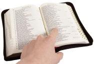 Biblia 58